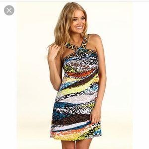 BCBG Maxazria Zotia Printed Dress in size Large